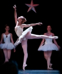 big-arts-gulfshore-ballet